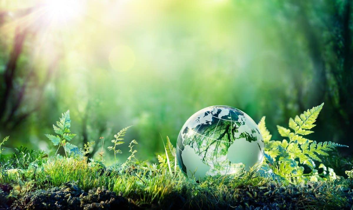 Nachhaltigkeit E-Commerce